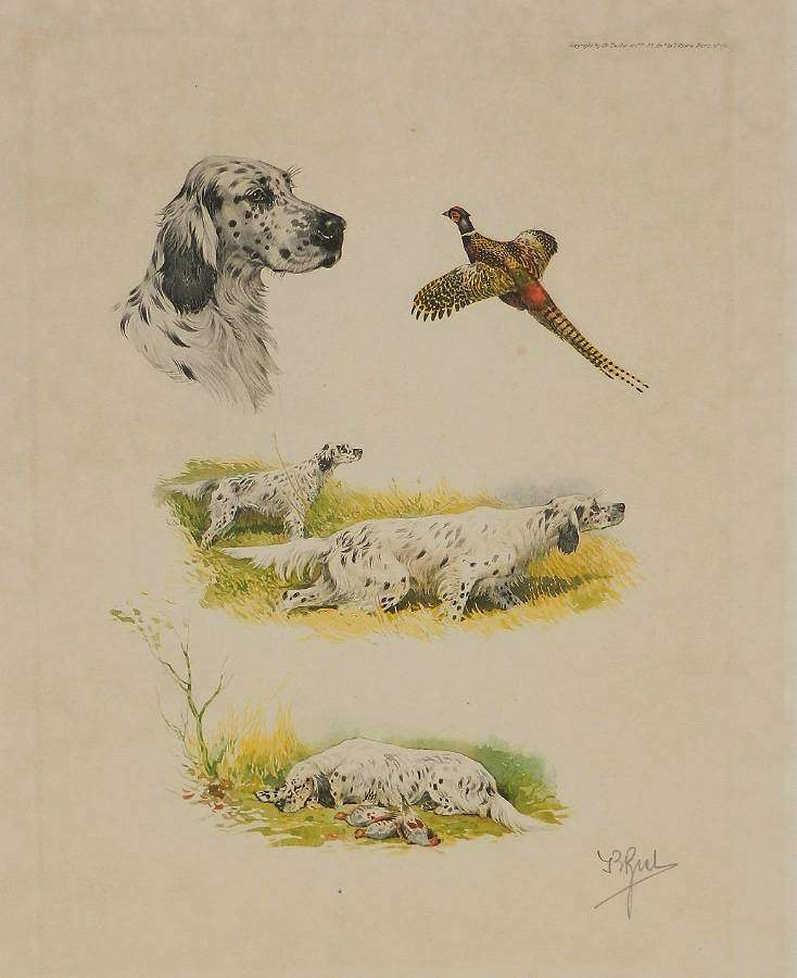 Aquatint Etching of Working Dogs French Study by Boris Riab