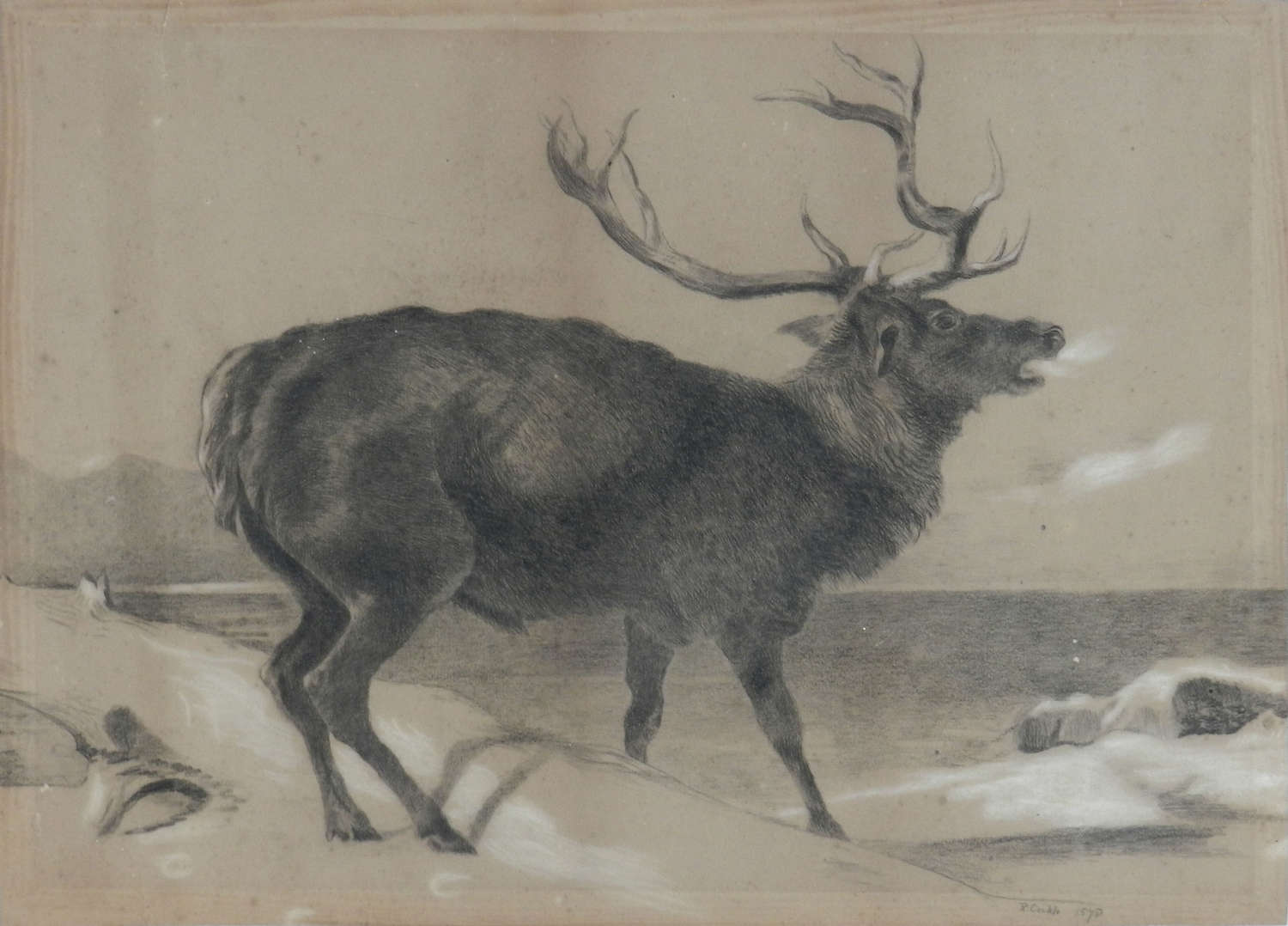 Moose Charcoal Painting by Richard Cockle Lucas 1878 English Signed 19